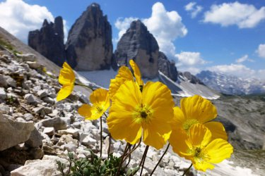 Hiking guide South Tyrol 4